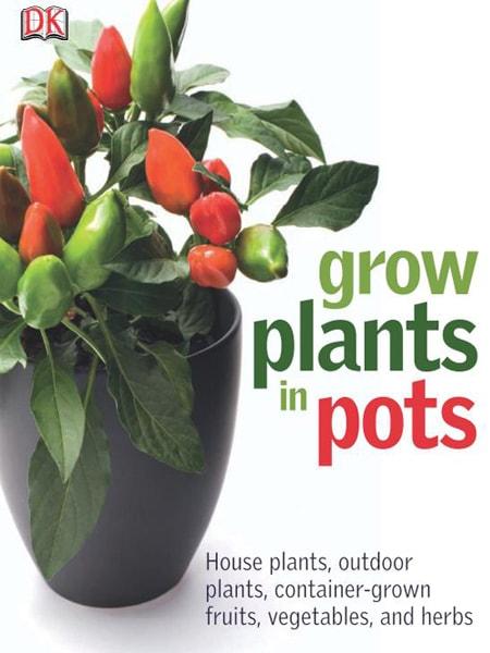 Grow Plants in Pots / Kỹ thuật trồng cây trong chậu