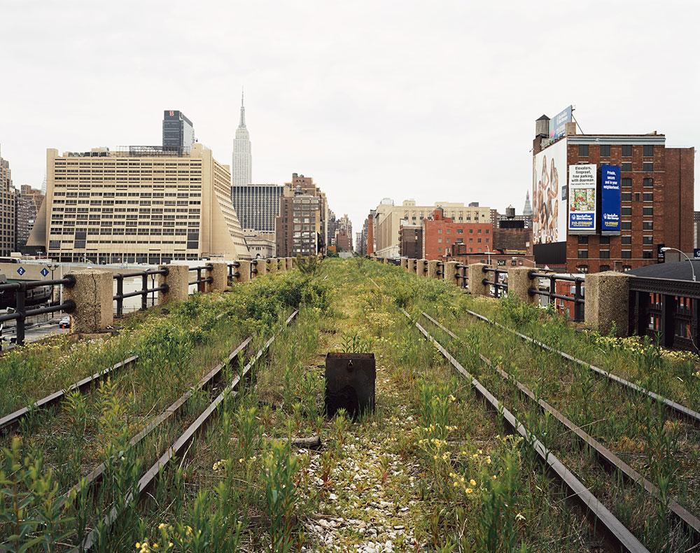 High Line khi bị bỏ hoang