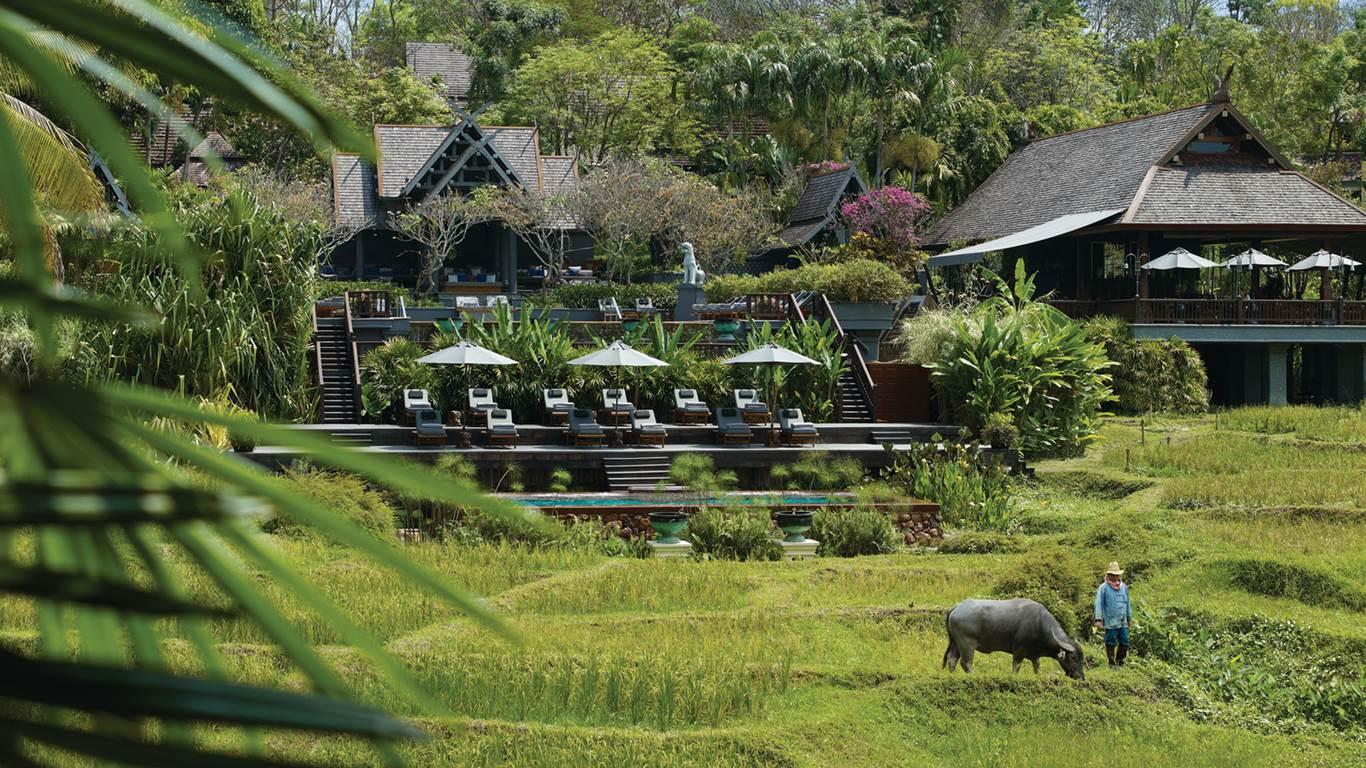 The Four Seasons Chiang Mai - thiết kế cảnh quan - egolandscape