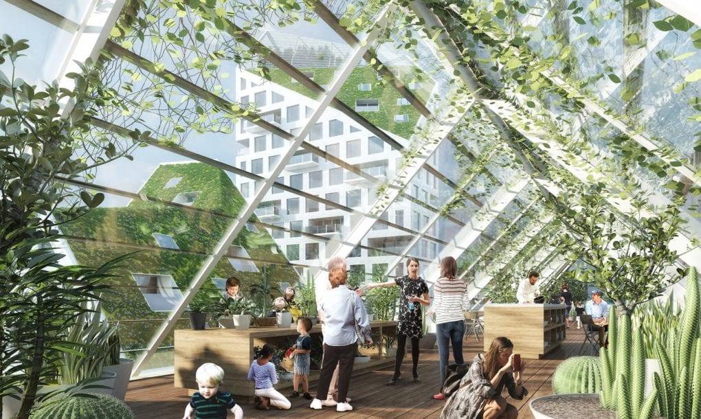 Phủ cỏ trên mái nhà tạo không gian xanh mát và bắt mắt