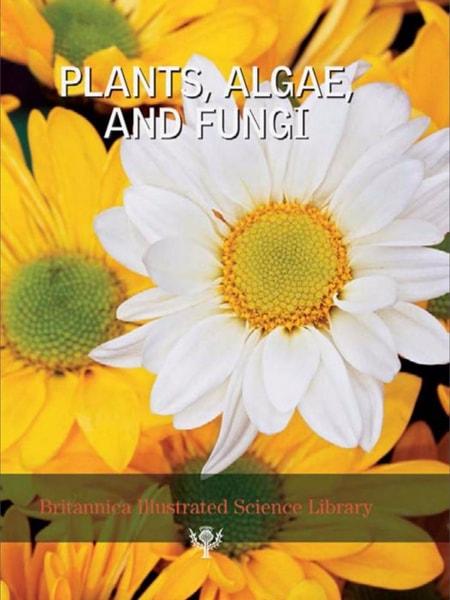 Bisl 06 plants, algae and fungi