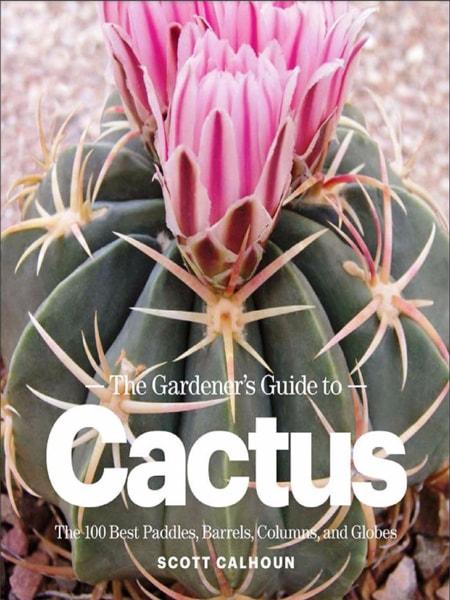 The gardener's guide to - cactus - Cây xanh cảnh quan