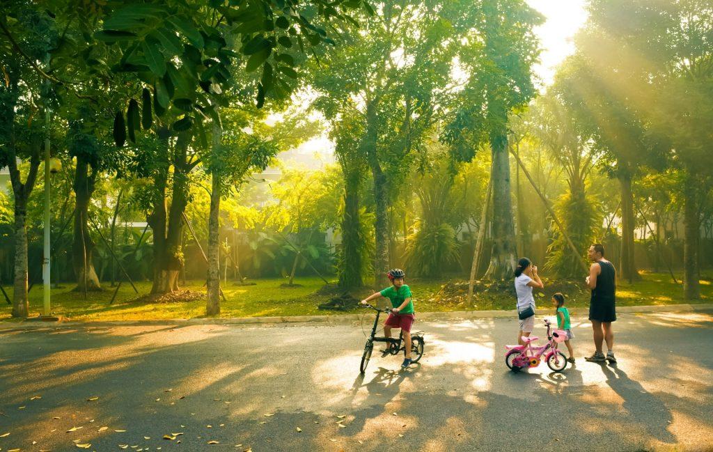 Cây xanh trong thiết kế cảnh quan khu ecopark