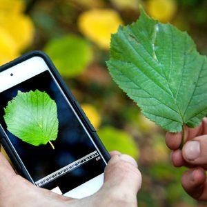 Những Ứng Dụng trên Smartphone dành cho Kiến trúc sư Cảnh Quan