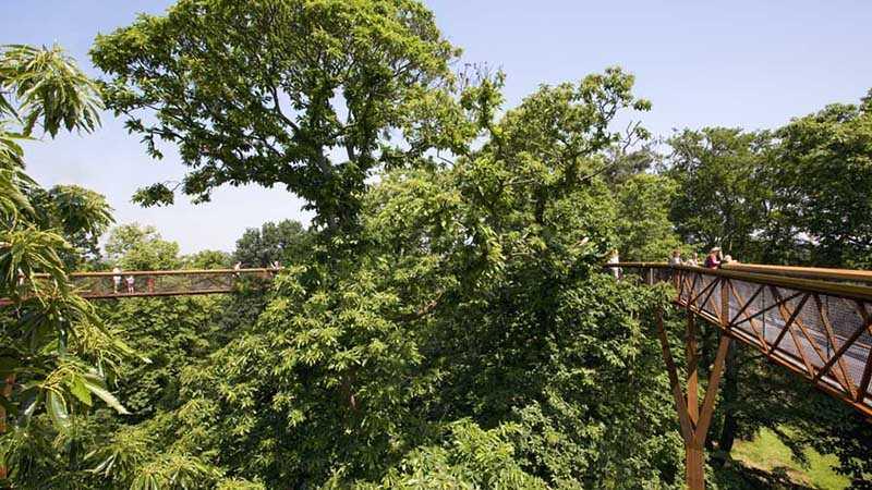 Xstrata Treetop Walkway at Kew Gardens with Tony Kirkham / Đường dạo trên không ở Vườn thực vật Kew