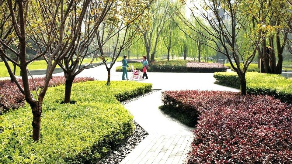 I want to be a landscape architect / Trở thành kiến trúc sư cảnh quan