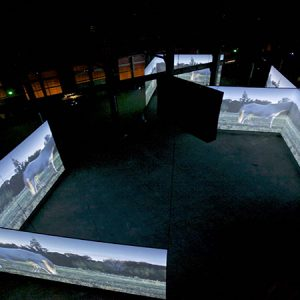 Doug Aitken Altered Earth Installation