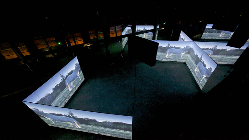 Doug Aitken Altered Earth Installation