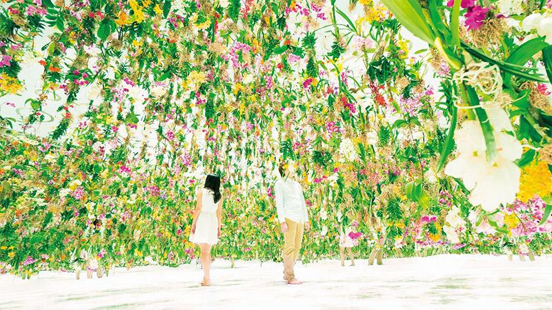 The Art of TeamLab: Floating Flower Garden
