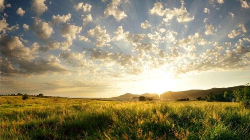 The Natural Light / Ánh sáng tự nhiên