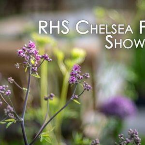 RHS Chelsea Flower Show 2018 Ep01