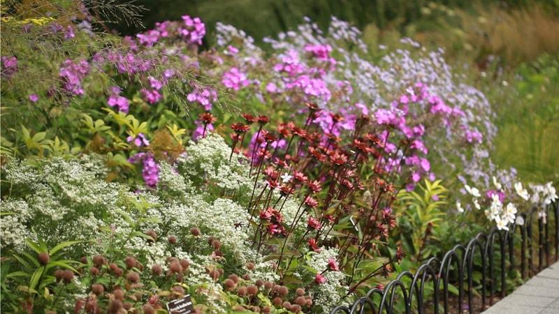 Seasonal Walk Opened September 2014 at The New York Botanical Garden