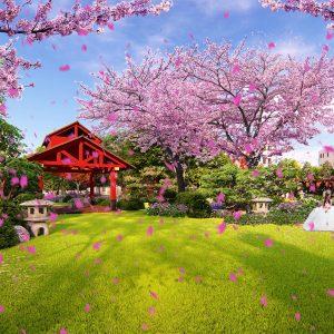 Hanami Park
