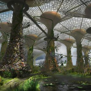 Gardens by the Bay Competition Film