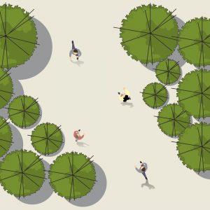 Những cách phối trí phổ biến trong thiết kế cảnh quan