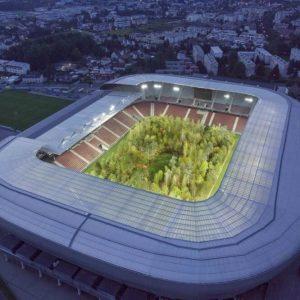 Nearly 300 trees transform a football stadium into Austria's largest public art installation / Tác phẩm sắp đặt: Khu rừng trong sân vận động